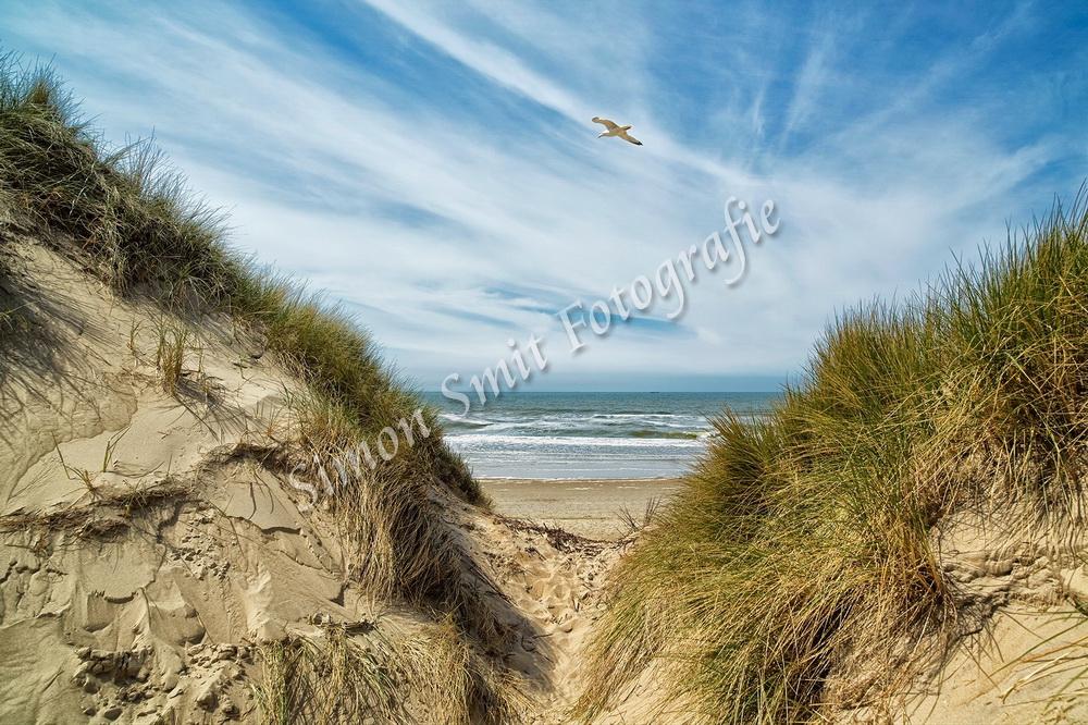 Doorkijk duinen