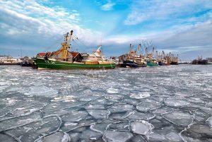 Texelse viskotters in het ijs, haven Oudeschild
