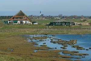 """Natuurgebied """"De Petten"""" , Den Hoorn"""